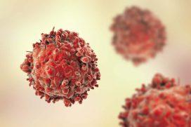 Leukemia and WBCs | Symptoms, Causes, Types, Diagnosis & Treatment